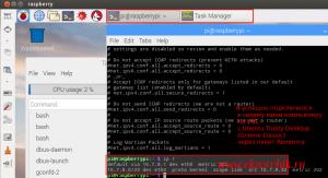 Я успешно подключился через Remmina к Raspberry Pi 3 Model B