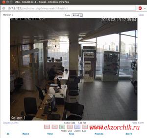 Видеоизображение успешно транслируется в ZoneMinder через браузер