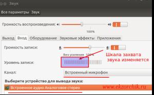 Проверяю работоспособность микрофона в ноутбуке Lenovo ThinkPad E555