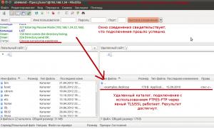 Успешное подключение к FTP-серверу с использованием TLS.