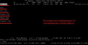 Предоставление расширенной информации по скачиваемому Torrent'у.